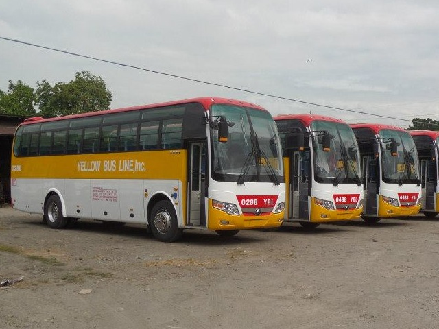 Yellow Bus Line