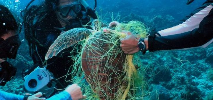 Ghost Nets Recovery